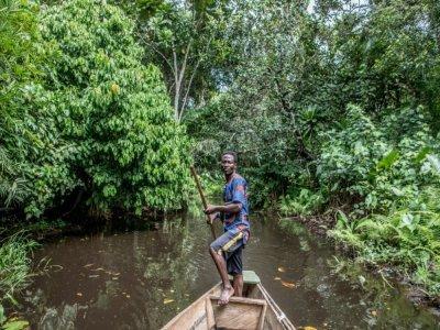 Un homme en pirogue dans la forêt de Hlanzoun, le 9 juillet 2021 au Bénin    Yanick Folly [AFP]