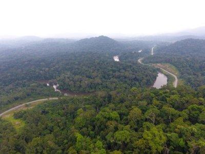 Vue aérienne de la forêt gabonaise, sur une image diffusée le 27 septembre 2019 par Ageos    - [Ageos/AFP/Archives]