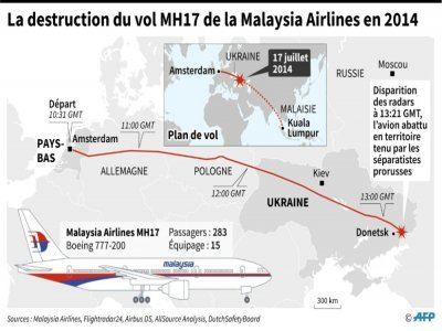 La destruction du vol MH17 en 2014    Sophie RAMIS [AFP]