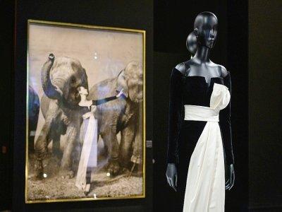 Une photographie de l'artiste américain Richard Avedon, devant une création Dior, le 7 septembre 2021 au Brooklyn Museum de New York    Angela Weiss [AFP]