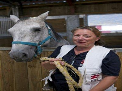 """Laetitia Bos, directrice du refuge de la fondation """"30 Millions d'Amis"""", avec l'un des chevaux du refuge, le 9 septembre 2021 à Bannegon, dans le Cher    GUILLAUME SOUVANT [AFP]"""