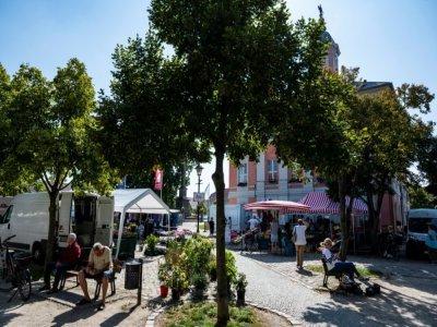 La mairie et la place du marché de Templin, 16.000 habitants, le 10 septembre 2021 - John MACDOUGALL [AFP/Archives]