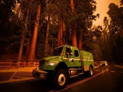 Des engins de lutte contre les incendies passent dans le parc national de Séquoia, près de Red Fir (Californie), le 17 septembre 2021 - Patrick T. FALLON [AFP]