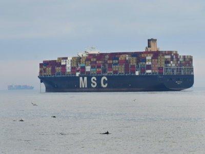 Un porte-conteneur de l'entreprise MSC (Mediterranean Shipping Company) en attente de déchargement des marchandises dans le port de Los Angeles (Californie) le 6 octobre 2021 - Frederic J. BROWN [AFP]