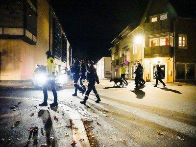 Des policiers sur les lieux d'une attaque meurtrière à l'arc, le 13 octobre 2021 à Kongsberg, en Norvège - Håkon Mosvold Larsen [NTB/AFP]