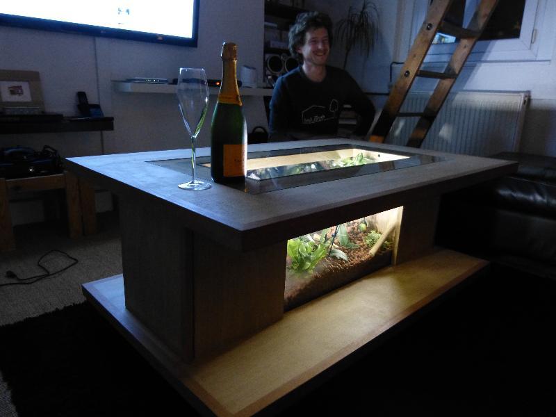 Une mini-jungle dans une table basse : l\'invention d\'un jeune ...